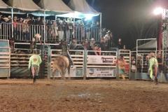 6.Rodeio